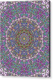 Acrylic Print featuring the photograph Kaleidoscope by Robyn King