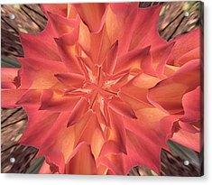 Kaleidoscope Rose Acrylic Print by Michele Kaiser