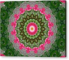 Acrylic Print featuring the photograph Kaleidoscope Roses In Pink And Green by MM Anderson