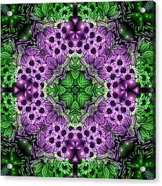 Kaleidoscopic 2 Acrylic Print by Gabour Demans