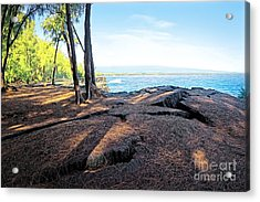 Acrylic Print featuring the photograph Kaloli Point 3 by Ellen Cotton
