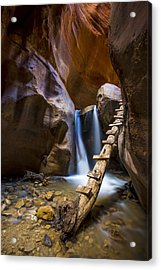Kanarra Creek Slot Canyon Acrylic Print