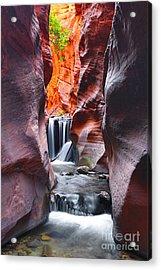Kanarra Falls Acrylic Print