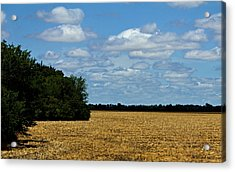Kansas Fields Acrylic Print