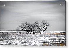 Kansas Snow Acrylic Print