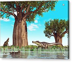 Kaprosuchus Prehistoric Crocodiles Acrylic Print by Walter Myers