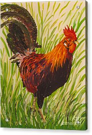 Acrylic Print featuring the painting Kauai Rooster by Anna Skaradzinska