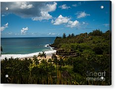Kauai South Shore Jungle Acrylic Print