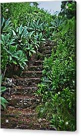 Kauai Stairway Acrylic Print