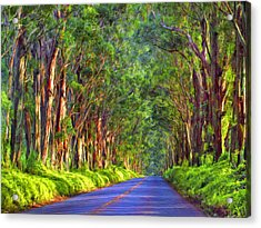 Kauai Tree Tunnel Acrylic Print