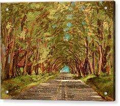 Kauiai Tunnel Of Trees Acrylic Print