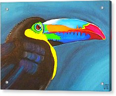 Keel Billed Toucan  Acrylic Print by Una  Miller