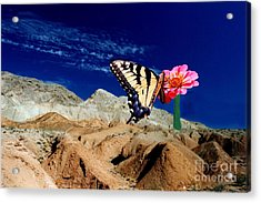 Keep The Faith Acrylic Print