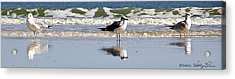 Acrylic Print featuring the photograph Keeping Watch by Kathy Ponce