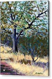 Kelly Ridge Trail Acrylic Print
