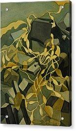 Kelp-on-the-rocks Acrylic Print