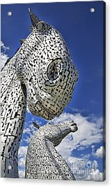 Acrylic Print featuring the photograph Kelpies by Craig B