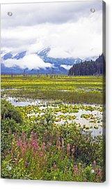 Kenai Lake Acrylic Print by Saya Studios