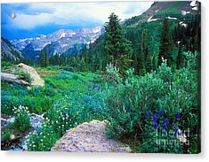 Kennebec Pass Acrylic Print by Teri Brown