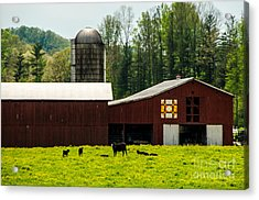 Kentucky Barn Quilt - 1 Acrylic Print by Mary Carol Story