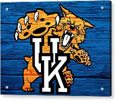 Kentucky Wildcats Barn Door Acrylic Print