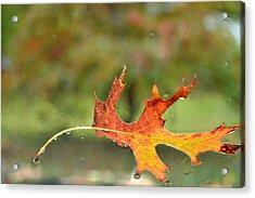 Acrylic Print featuring the photograph Kept From Falling by Carlee Ojeda