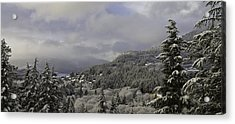 Acrylic Print featuring the pyrography Ketchikan Alaska After A Small Snow. by Timothy Latta