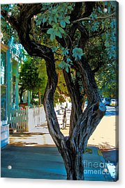 Key West Beauty Acrylic Print by Claudette Bujold-Poirier