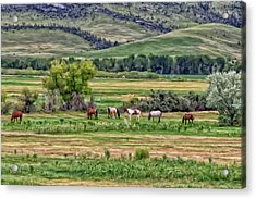 Acrylic Print featuring the painting K G Ranch by Michael Pickett