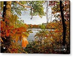 Kickimuit View Acrylic Print