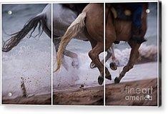 Kicking Up The Sand Acrylic Print