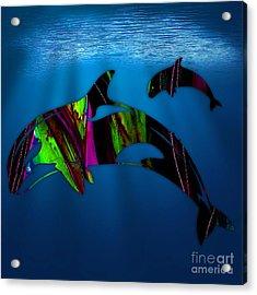 Killer Whales Acrylic Print by Marvin Blaine