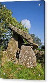 Kilmogue Megalithic Tomb, Harristown Acrylic Print by Panoramic Images