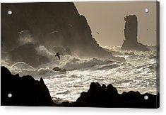 Kinard Power Acrylic Print