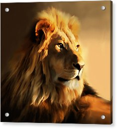 King Lion Of Africa Acrylic Print