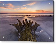 King Neptune Acrylic Print by Debra and Dave Vanderlaan