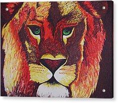 Lion In Orange Acrylic Print