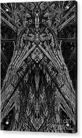 King Of The Wood Acrylic Print by David Gordon