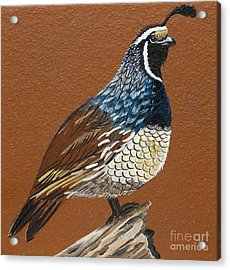Acrylic Print featuring the painting King Quail by Jennifer Lake