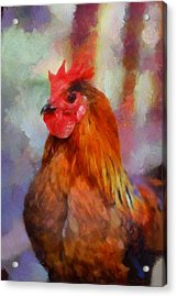 Acrylic Print featuring the painting King Rooster by Kai Saarto