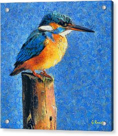Kingfisher The King Acrylic Print by George Rossidis