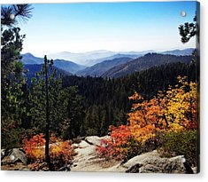 Kings Canyon Acrylic Print
