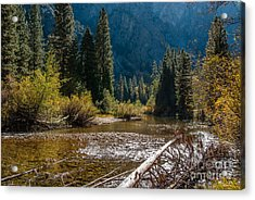 Kings River 1-7810 Acrylic Print by Stephen Parker