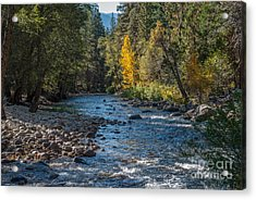 Kings River 1-7813 Acrylic Print by Stephen Parker