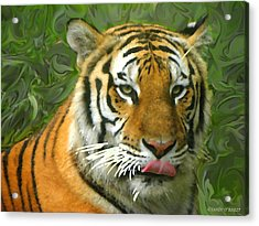 Acrylic Print featuring the photograph Kisa Painted by Sandi OReilly