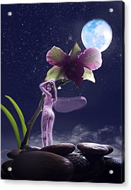 Kiss My Faery Ass Acrylic Print by Diana Shively
