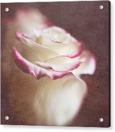 Kissed With Love #love #rose Acrylic Print