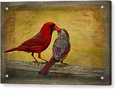 Kissy Kissy Birds Acrylic Print
