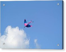 Acrylic Print featuring the photograph Kite At The Fort  by Toni Martsoukos