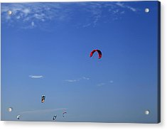 Kite Board Canopies And Blue Sky Acrylic Print by Noel Elliot